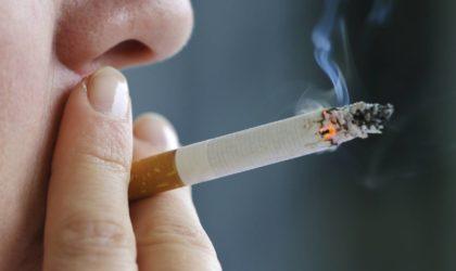 Le immissioni provocate dal fumo di sigaretta