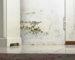 Danni da infiltrazioni: responsabilità del condominio e risarcibilità del danno esistenziale