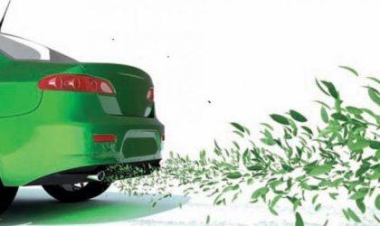 Ecobonus 2019. Contributo a fondo perduto per l'acquisto di nuovi veicoli commerciali a basse emissioni.