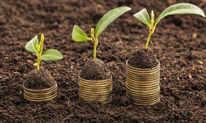 GAL Terre Astigiane. PSL 2014/2020. Misura 6.4.2. Contributo a fondo perduto fino al 40% per la creazione e sviluppo di attività extra-agricole.